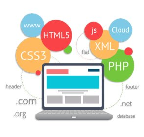 Website Development - Siliconchips Services